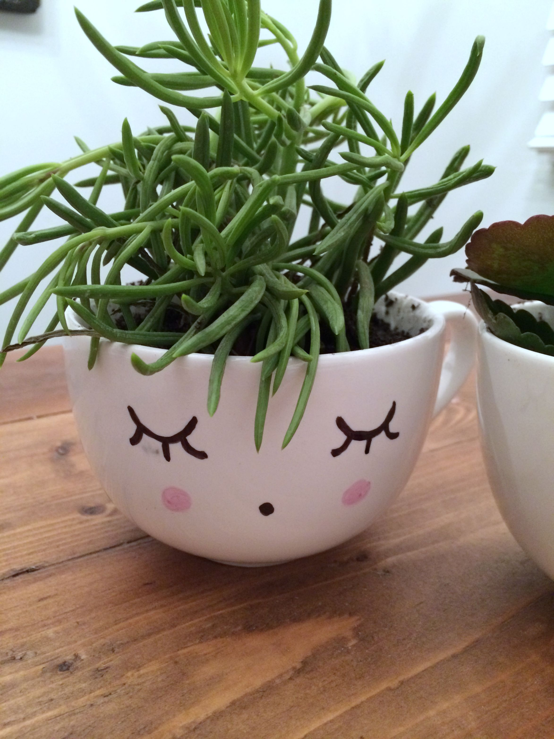Homemade Gift Face Planter
