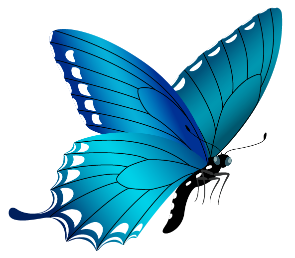 Blue Butterfly Png Image Gallery Yopriceville High Quality Images And Transparent Png Free Clipart Blue Butterfly Butterfly Png Images