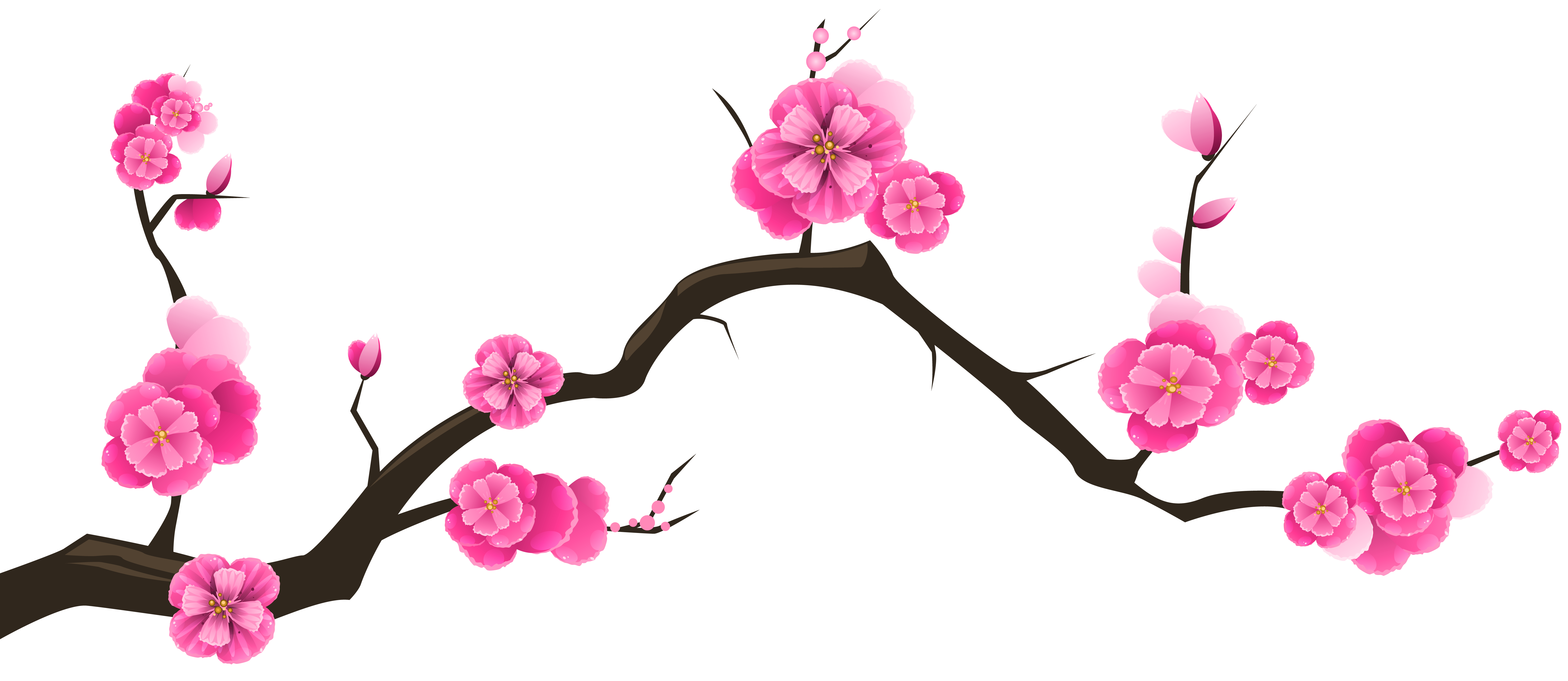 Sakura Branch Transparent Clip Art Image Gallery Yopriceville High Quality Images And Transparent Png Free Clipart Clip Art Free Clip Art Branch Drawing