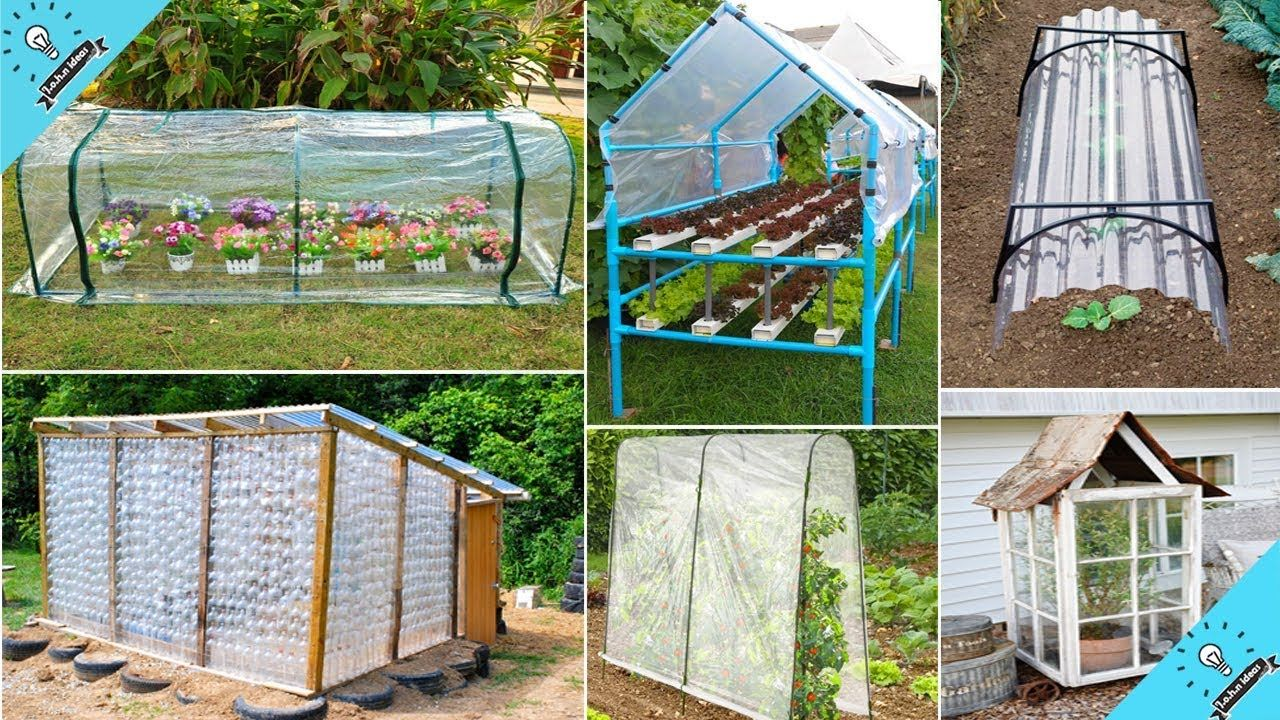Diy Gardening 100 Cheap Easy Diy Greenhouse Ideas Diy Garden Backyard Greenhouse Diy Greenhouse Plans Diy Backyard Diy backyard greenhouse ideas