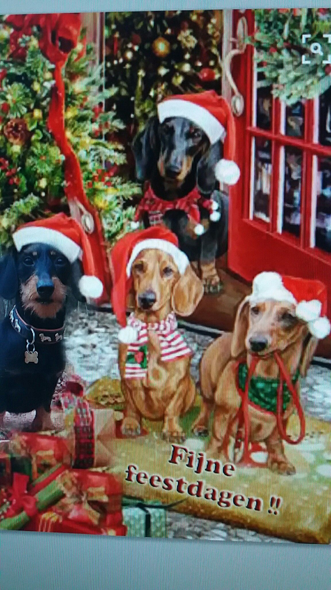 Pin By Ramona On Christmas Sentiment Vintage Dachshund
