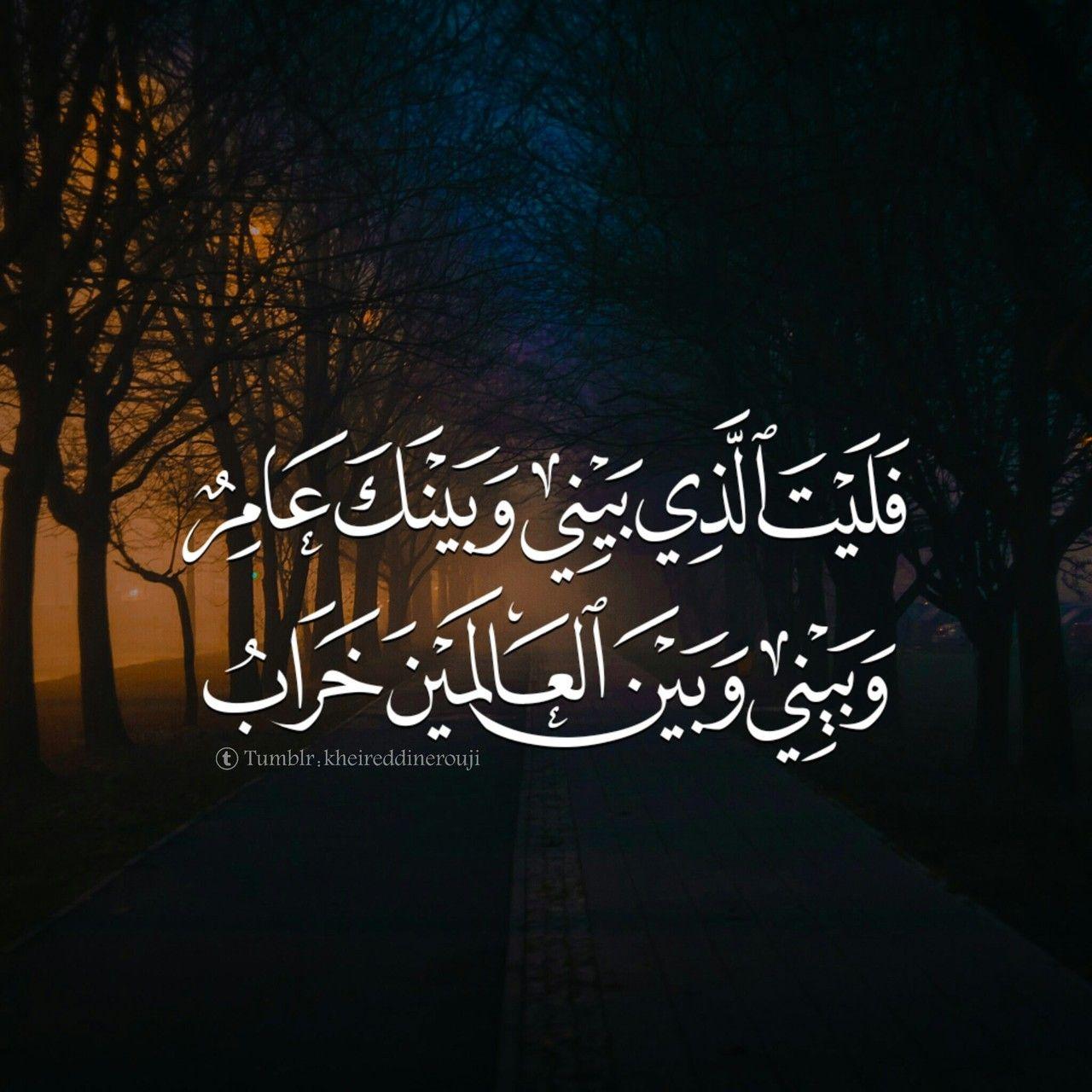 يارب إختر لي ولا تخي رني Photo Arabic Poetry Words Arabic Quotes