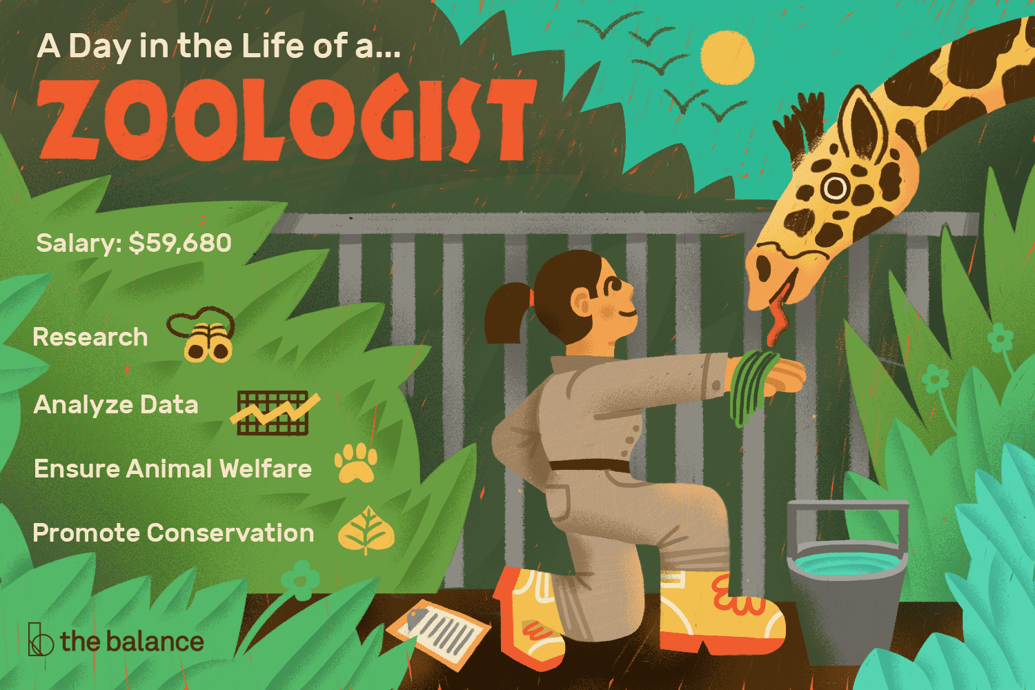 A Zoologist Is A Biologist Who Studies A Variety Of Animal Species Get A Job Description Salary Information And M Zoologist Career Work With Animals Zoology