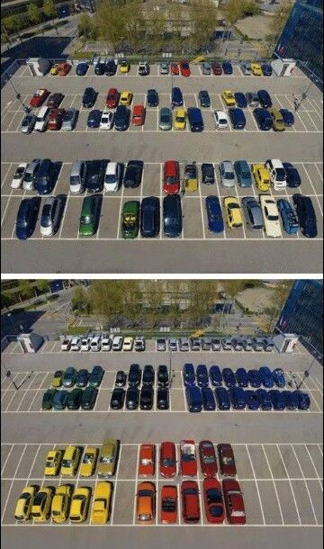 There is a new valet we think he may have OCD