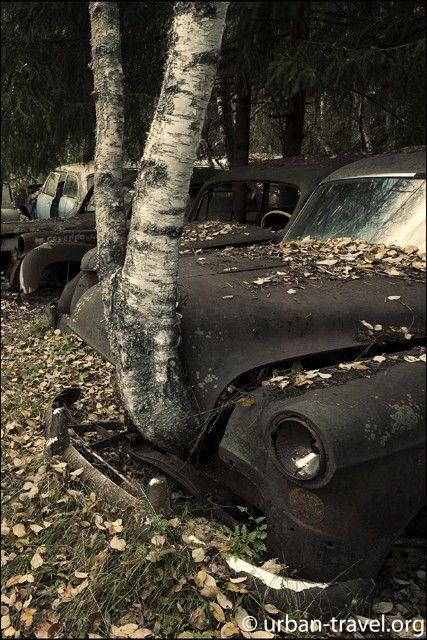 The Swedish car graveyard