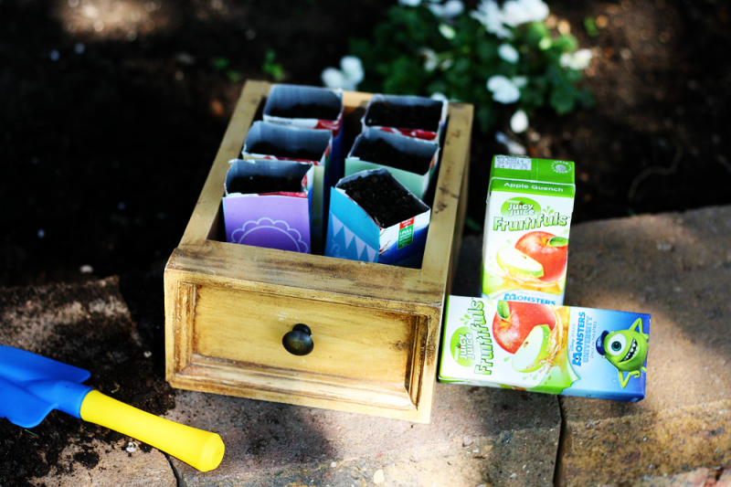 Sunny with a Chance of Sprinkles: A 'Monster' Craft: Juice Box Seed Starters #MUJuice
