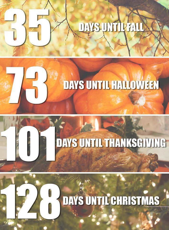 Is everyone ready for the holidays?😃🎃🎄⛄️🍁🍂 They will be
