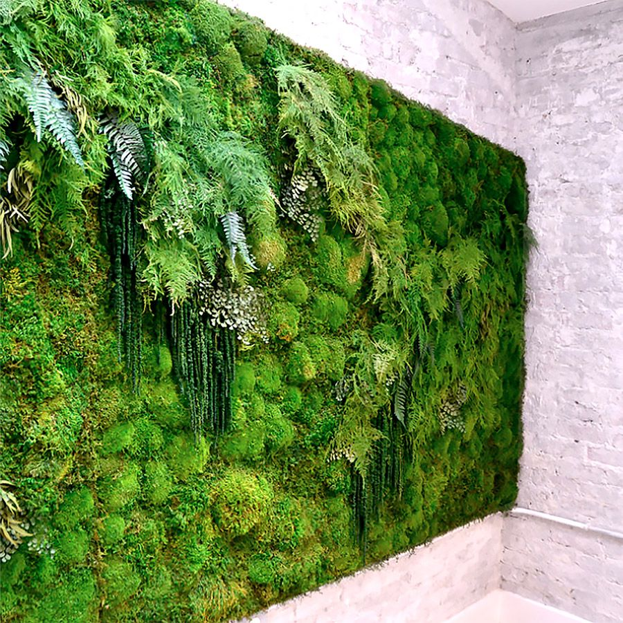 Plant Wall Art living moss wall | moss art, meditation space and art pieces