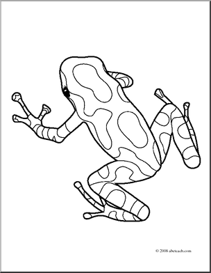 Clip Art Frogs Green Black Poison Dart Frog Coloring Page - coloring page of a tree frog