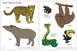 Jungle Rainforest Animals Printable Templates Coloring Pages Firstpalette Com Regenwouden Dieren Zootopia