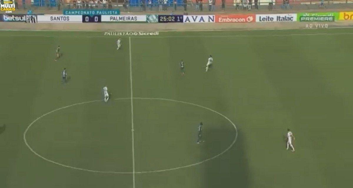 Assista Ao Vivo Santos X Palmeiras Online Em Hd Com Imagens Em