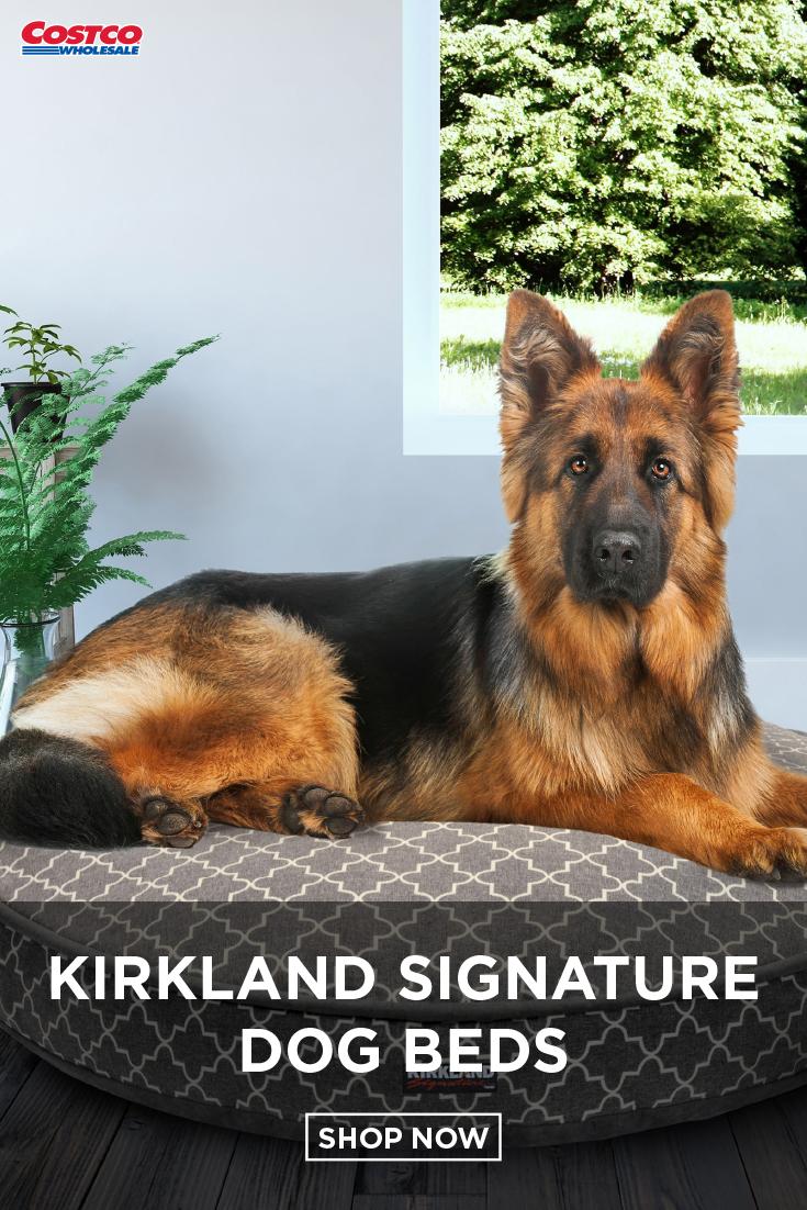Kirkland Signature 42 Round Dog Bed Gray Lattice Faux Suede Wireless Dog Fence Dog Fence Dogs