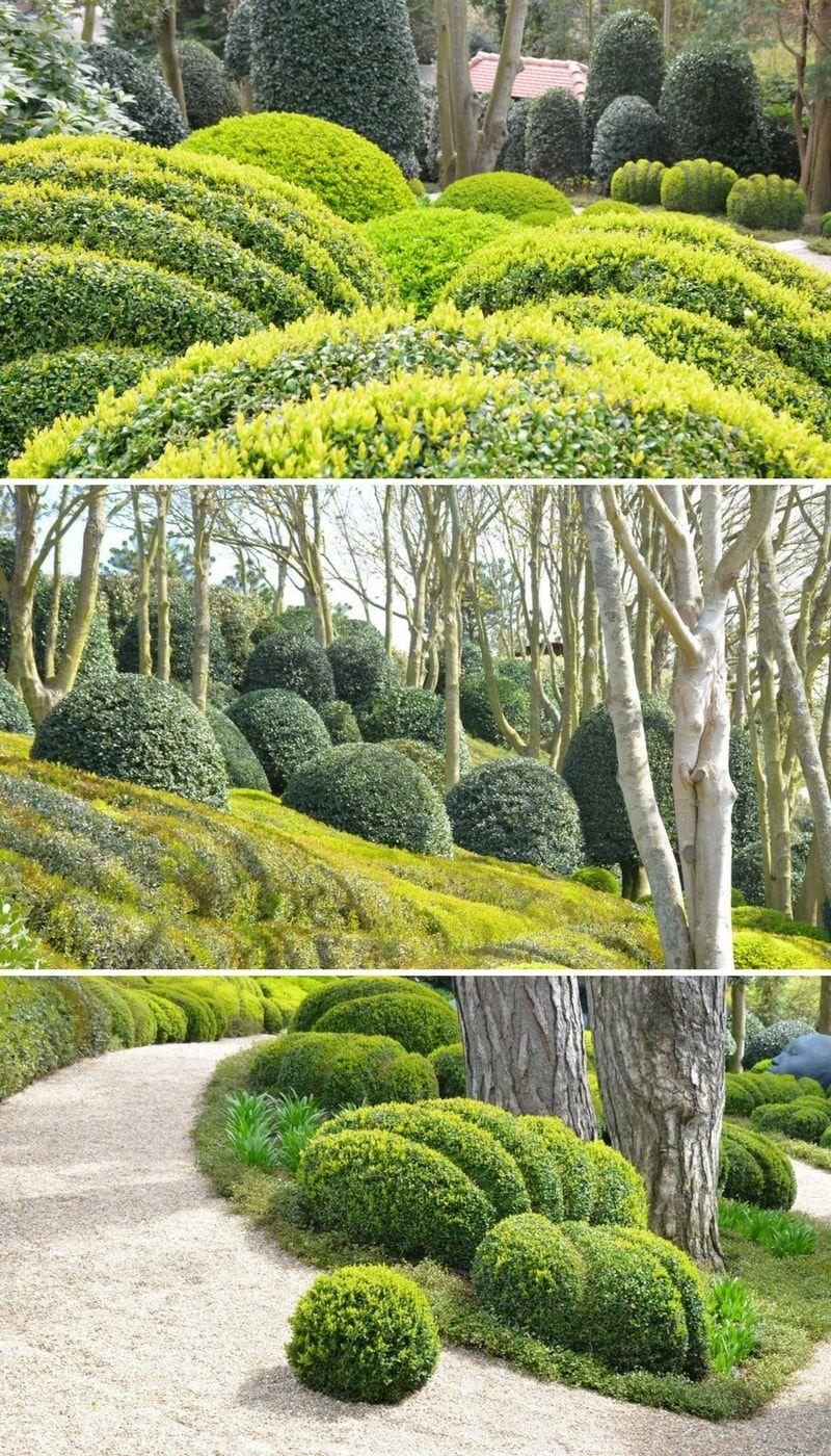 Les Jardins D Etretat Garden Kompozice Rostlin Garden Garden