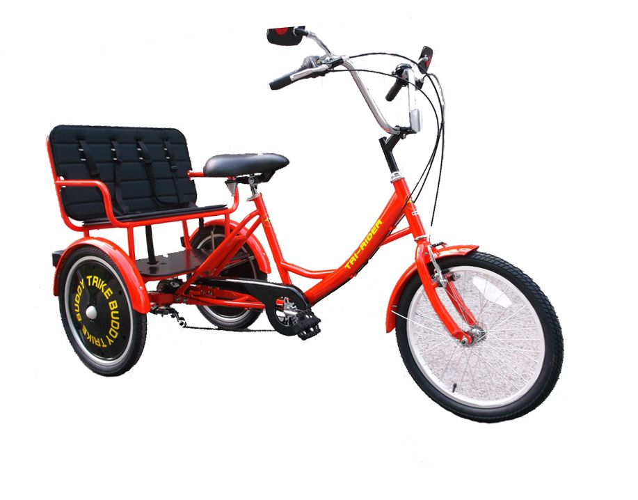 Pin On Trike Adult Special Needs Adaptable