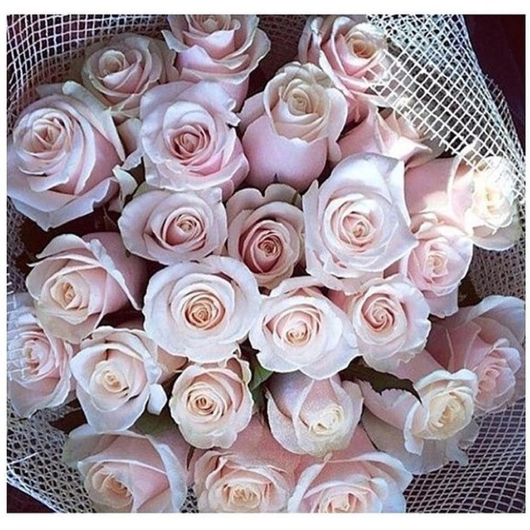 Pretty little things #shopmarsia