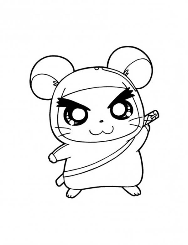 Pin On Guinea Pig Coloring Pages