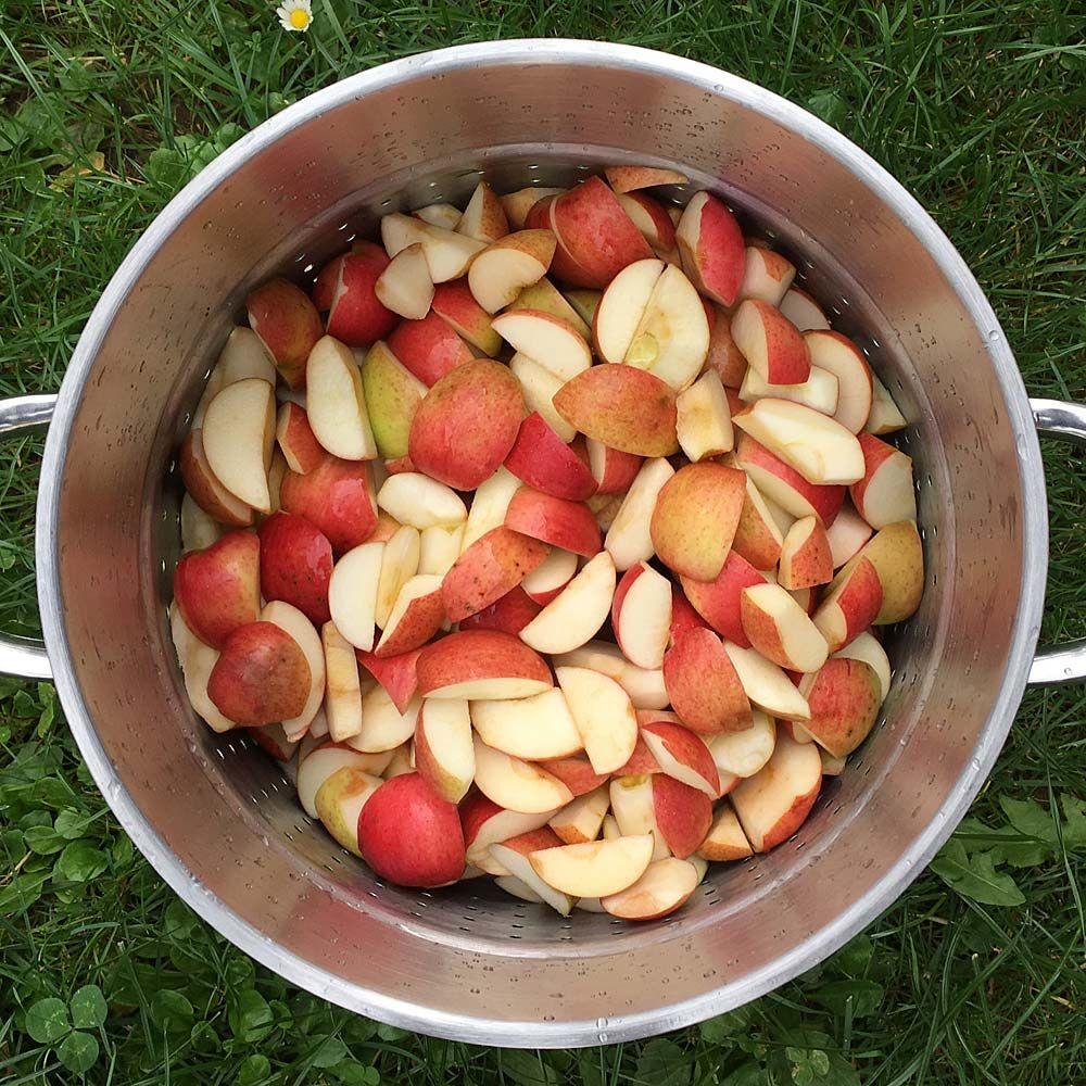 äpfel Entsaften Lassen
