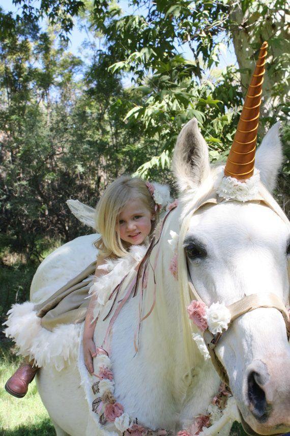 A Horse Wearing A Unicorn Costume   Unicorn Costumes ...