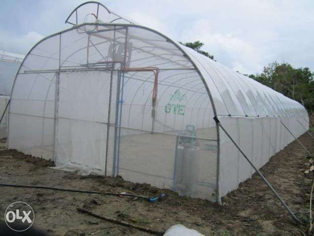Low Cost Greenhouse Phillipines For Sale Philippines Find Brand