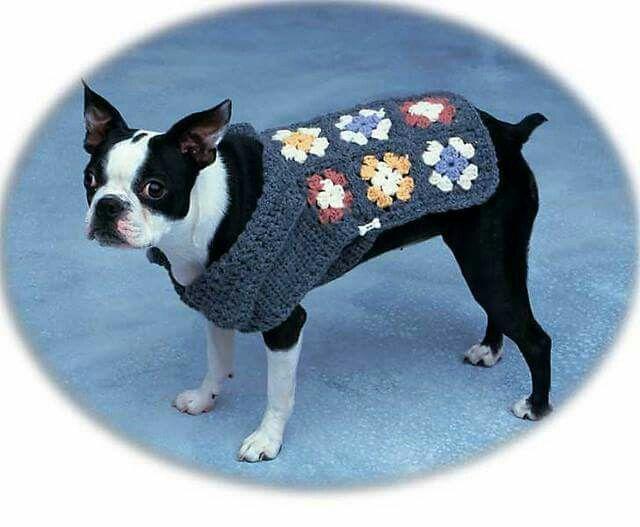 Crochet para tu mascota | ropa de cuca&yako | Pinterest | Mascotas y ...