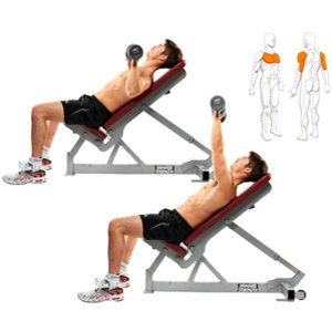 incline chest press dumbbells  abs workout workout