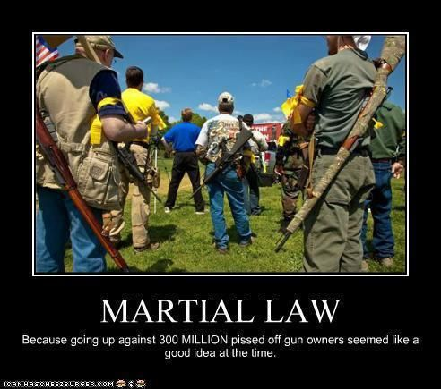 Martial Law: Because going up against 300 MILLION pissed off gun owners seemed like a good idea at the time. Second Amendment