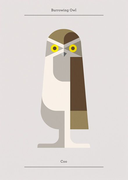 Il gufo (questo è di Josh Brill) è sempre stato uno dei nostri animali preferiti. #sapevatelo