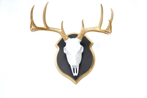 Faux Taxidermy - White Deer Skull - Gold Antlers - Wall