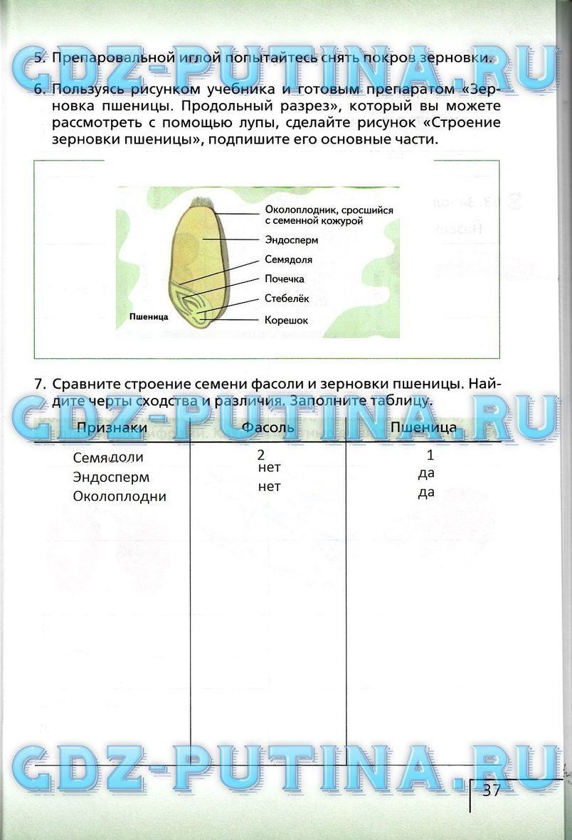 Готовые домашние задания по географии в.акоринская, и.в.душана