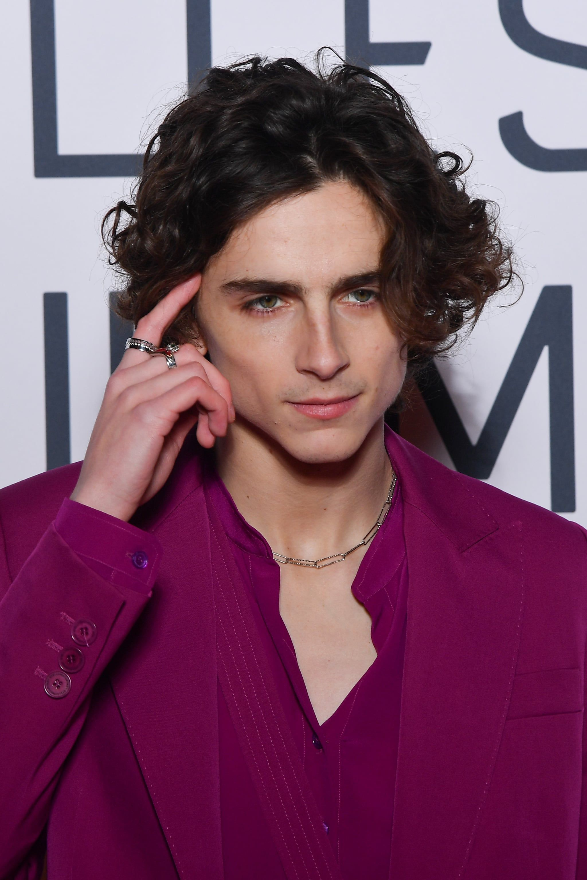 Oh My Timothee Chalamet Rocked A Raspberry Colored Suit At The Premiere Of Little Women Timothee Chalamet Timmy T Pretty Boys