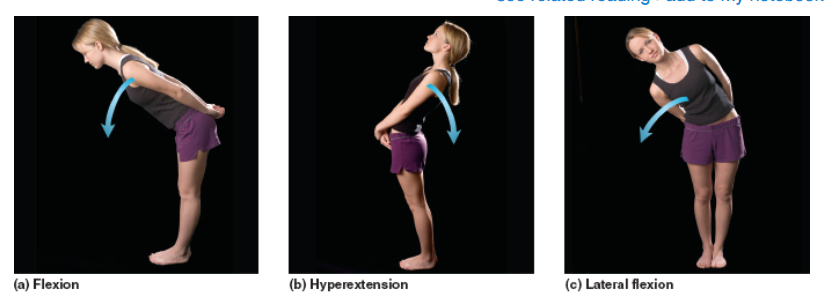 Here is another example comparing/contrasting flexion and ...