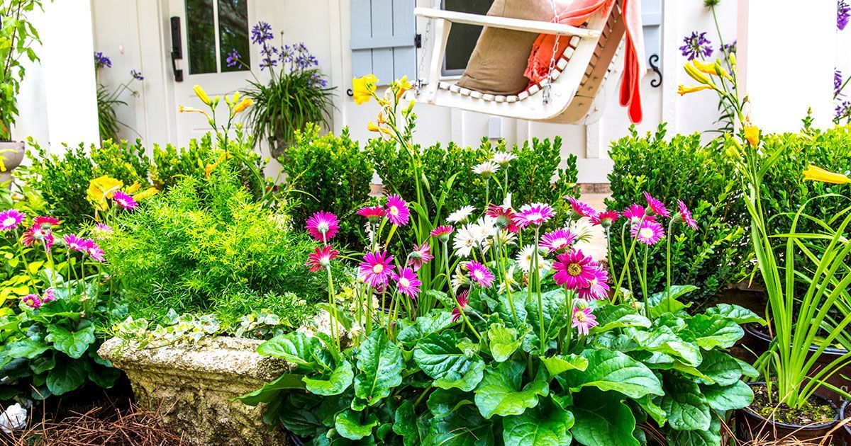 Make planning your garden for spring much easier by choosing from our list Our Top 5 Favorite Low Maintenance Perennials blooming Perennials maintenance Perennials full s...