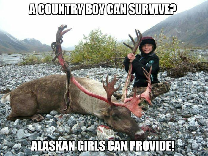Funny Reindeer Meme : 30 hilariously accurate memes about alaska alaska memes and funny