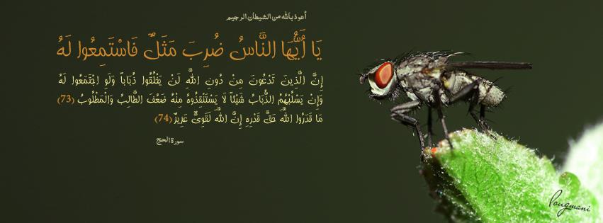 Pin On Islamic Fb Cover