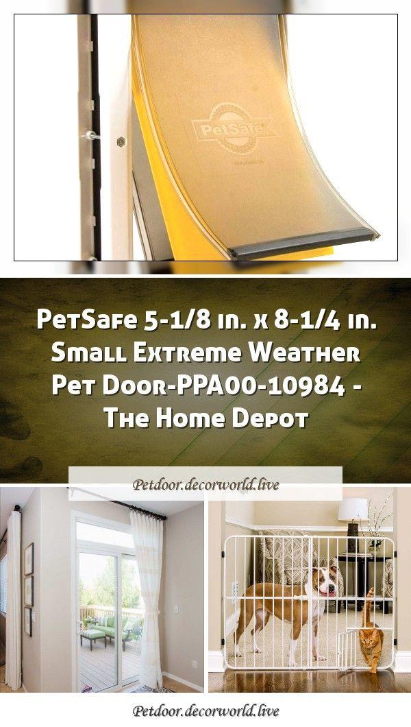 Petsafe 5 1 8 In X 8 1 4 In Small Extreme Weather Pet Door Ppa00 10984 The Home Depot In 2020 Pet Door Sliding Patio Doors Home Depot