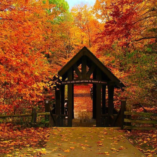 Where to Find Wisconsin's Most Stunning Fall Foliage: Seven Bridges Trail, Grant Park, South Milwaukee
