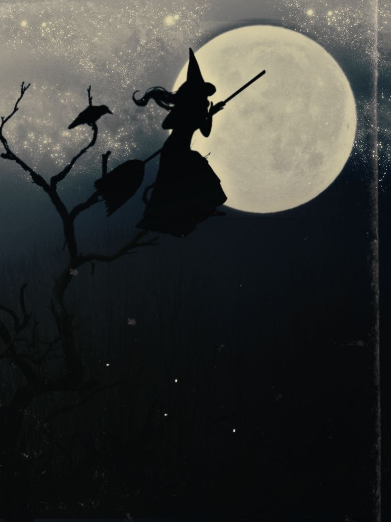 Las Mejores 32 Ideas De Maria Lionza Maria Lionza Imágenes De Brujas Brujas Volando