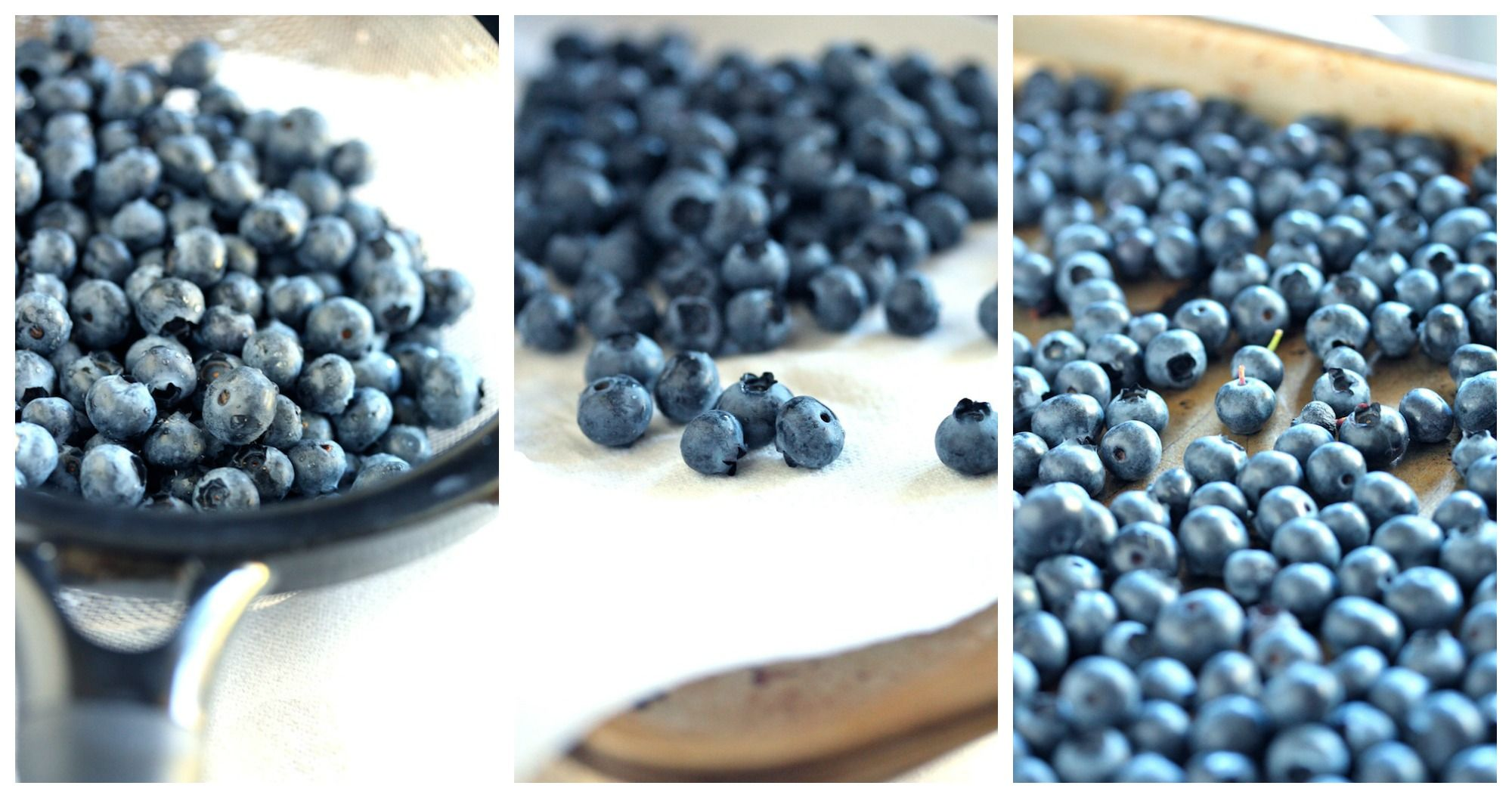 How to Freeze Berries Country Cleaver Food, Canning