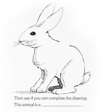 The Rabbit Puzzle Rabbit Drawing Animal Drawings Drawings
