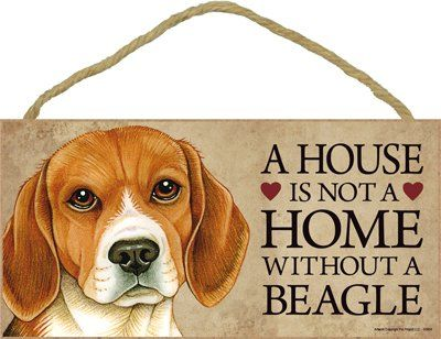 Amazon Com A House Is Not A Home Without Beagle Dog 5 X 10