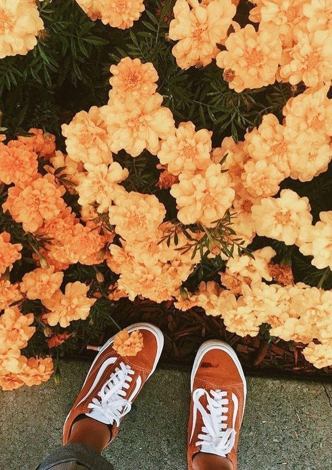Insta And Pinterest Amymckeown5 Orange Aesthetic Orange Vans Yellow Aesthetic