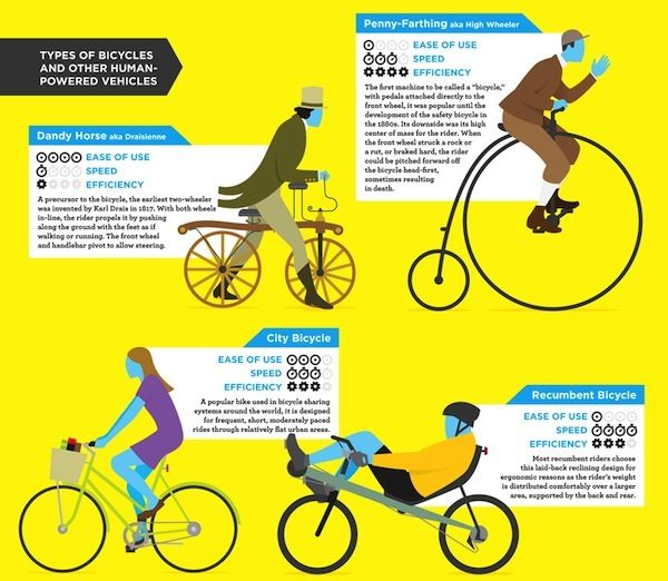 Infographic A Guide To The Different Types Of Bicycles