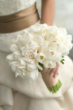 Gardenia Bouquet Sposa.This Combination Of Gardenias And White Tulips Is Beautiful Too
