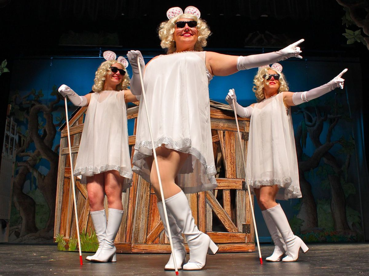 Three Blind Mice Shrek Three Blind Mice Costume Beauty Studio