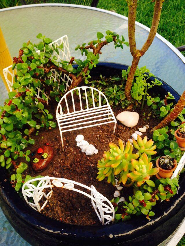 Jardín miniatura Jardín miniatura Pinterest Jardines en
