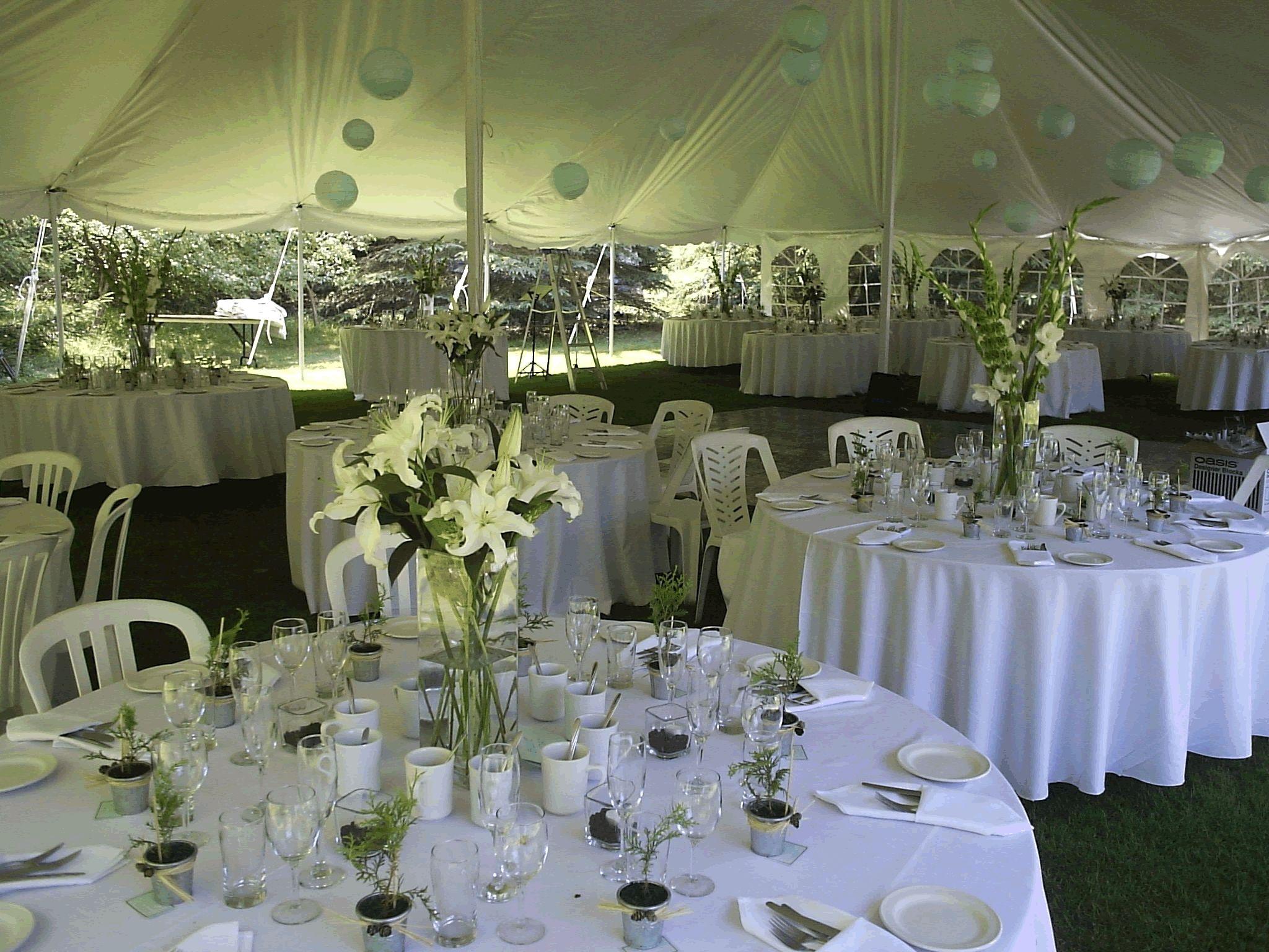 Garden Wedding Reception Ideas Simple httpweb2reviewinfo