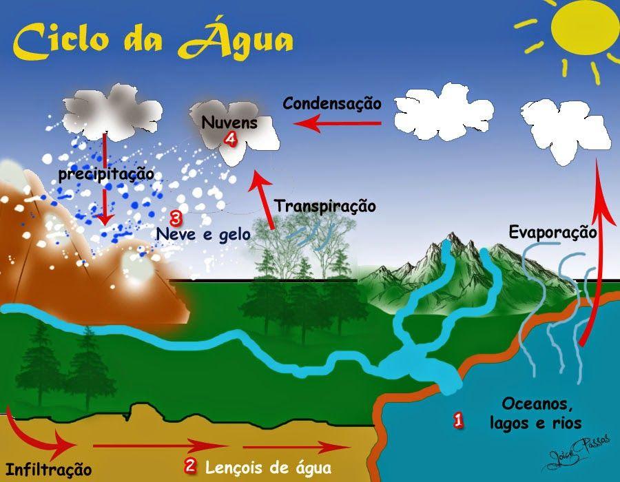 166d08237968ef52f7575285701765d0 Jpg 900 700 Ciclo Da Agua Atividades Sobre A Agua Estudo Do Meio