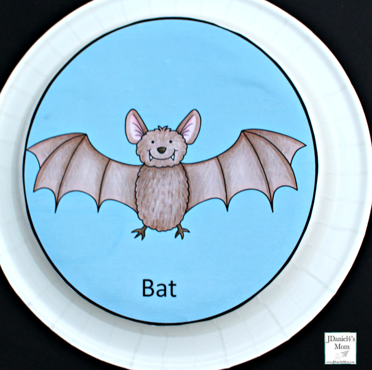 Echolocation Activity For Kids This Is A Fun Sensory And