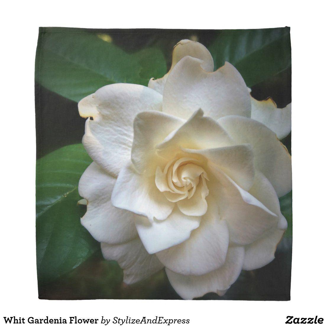 Whit Gardenia Flower Bandana Zazzle Com White Gardenia