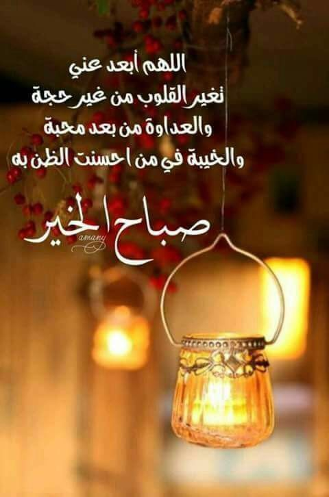 Good Morning صباح الخير Good Morning Arabic Good Morning Cards Good Morning Greetings